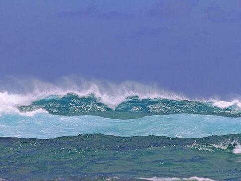 Turbulent Waves
